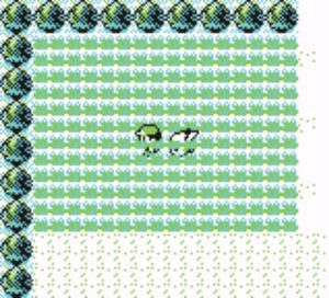Pokémon Yellow grinding grass